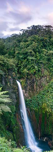 Costa Rica Vacations How to Travel Safely in Costa Rica in the time of COVID-19 and Come Back Happier Than Ever.